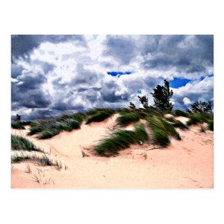 Hierba de la duna de la playa de Sandy Tarjetas Postales
