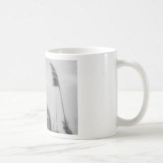 Hierba de la línea divisoria de las aguas taza de café