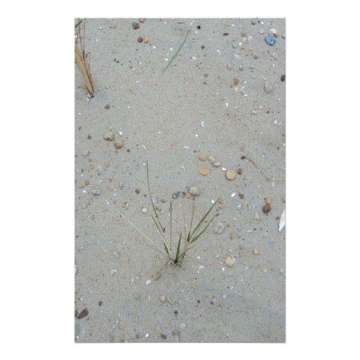 Hierba de la playa papeleria de diseño