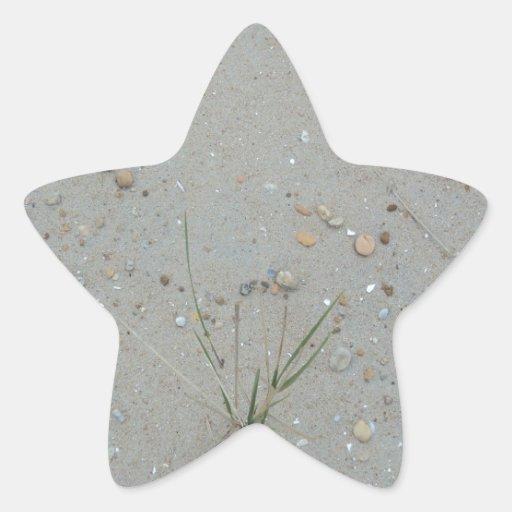 Hierba de la playa pegatina en forma de estrella