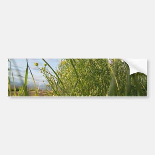 Hierba de la primavera etiqueta de parachoque
