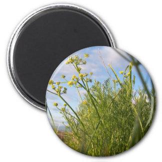 Hierba de la primavera imán redondo 5 cm