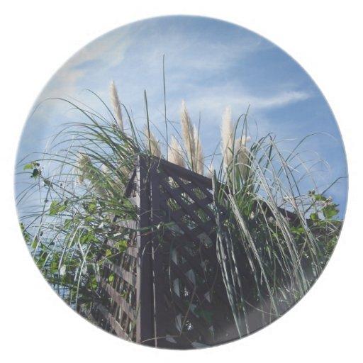 hierba de pampa y cielo azul, 秋の青空とススキ, placa plato