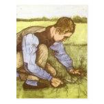 Hierba del corte del muchacho con la hoz de postales