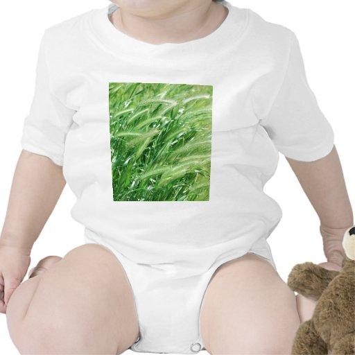 Hierba del trigo camisetas