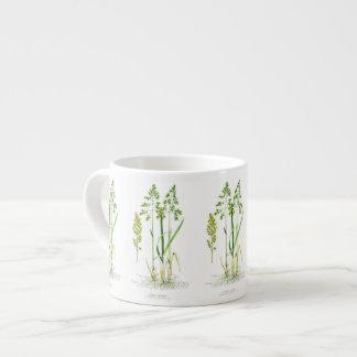 Hierba dulce botánica taza espresso