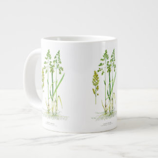 Hierba dulce botánica taza grande