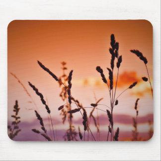 Hierba en la estera del ratón de la puesta del sol mousepad