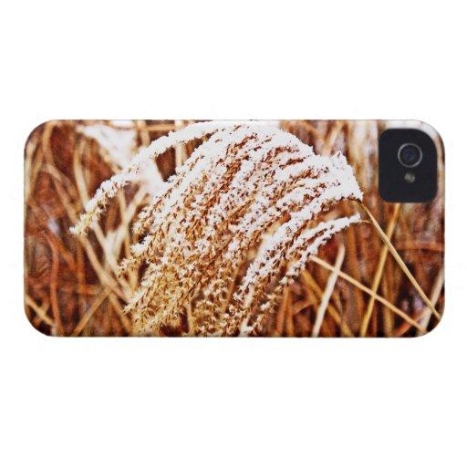 Hierba nevada iPhone 4 Case-Mate protectores
