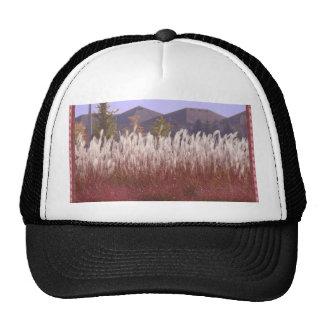 Hierba OAKVILL de las flores del camisetas de la Gorra