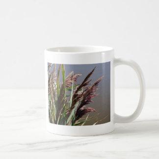 Hierba púrpura de la playa taza