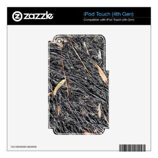 Hierba quemada calcomanías para iPod touch 4G