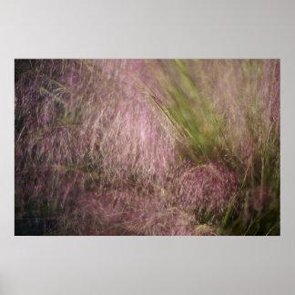 Hierba rosada póster