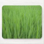 Hierba verde alfombrillas de raton