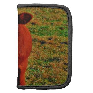 Hierba verde clara de la pequeña vaca de Brown Organizador