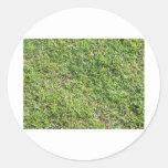 Hierba verde corta etiqueta redonda