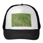 Hierba verde corta gorras de camionero