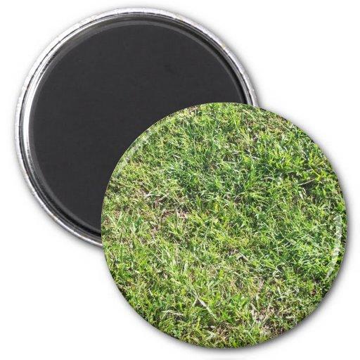 Hierba verde corta imán de frigorifico