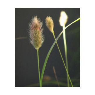 Hierba verde de oro impresión en lienzo