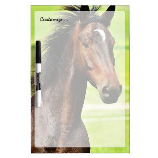 Hierba verde del caballo hermoso de Brown Pizarras Blancas