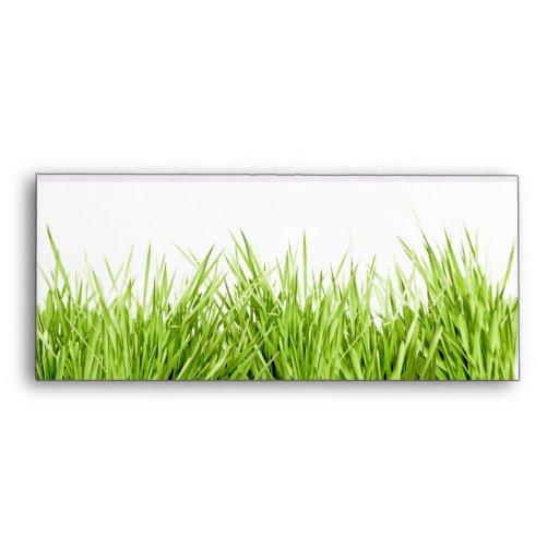 Hierba verde fresca