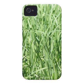 Hierba verde funda para iPhone 4