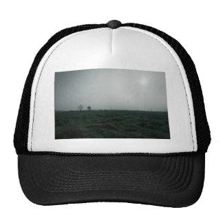 Hierba verde oscuro y cielo gris gorras