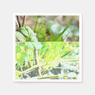 Hierba verde servilleta de papel