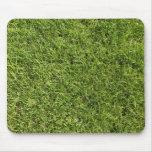 Hierba verde tapete de ratón