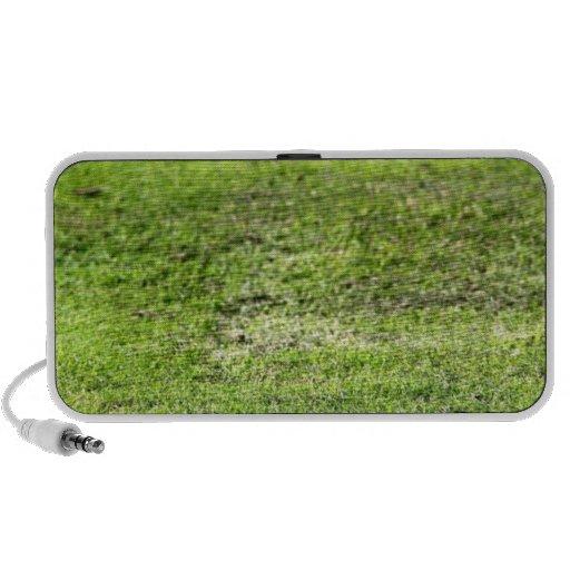 Hierba verde vieja laptop altavoces