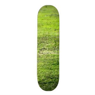 Hierba verde vieja tablas de patinar