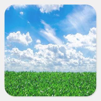 Hierba verde y cielo azul pegatina cuadradas