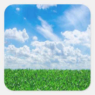 Hierba verde y cielo azul calcomanías cuadradas personalizadas