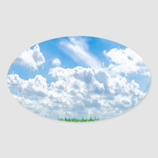 Hierba verde y cielo azul pegatina ovaladas personalizadas