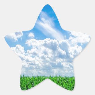 Hierba verde y cielo azul calcomania forma de estrella