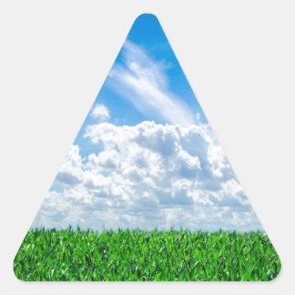 Hierba verde y cielo azul pegatina triangulo personalizadas