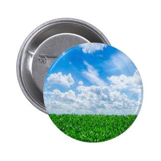 Hierba verde y cielo azul pin
