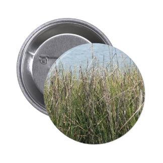 Hierba y agua de cañas pin