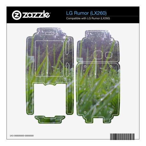 Hierba y árbol skin para el LG rumor