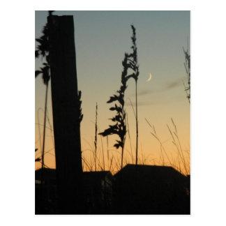 Hierba y casas de la playa en la oscuridad postales