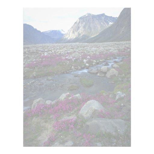 hierba y corriente Amplio-hojeadas, isla del sauce Membrete