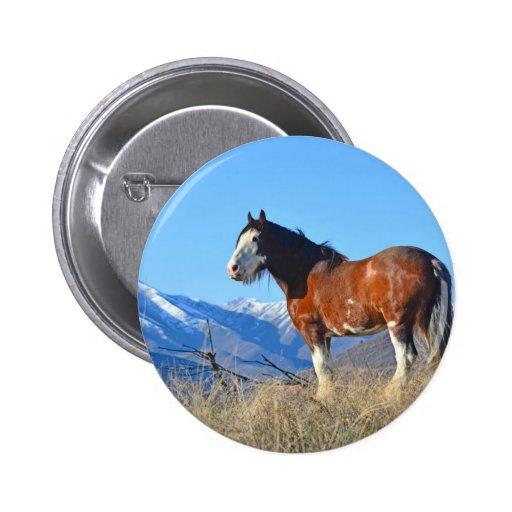 Hierba y montañas del caballo pin redondo 5 cm