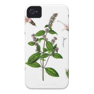 Hierbabuena iPhone 4 Case-Mate Funda