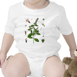 Hierbabuena Traje De Bebé