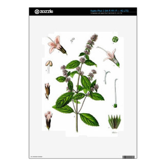 Hierbabuena iPad 3 Pegatinas Skins