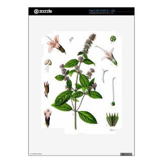 Hierbabuena Skin Para El iPad 2