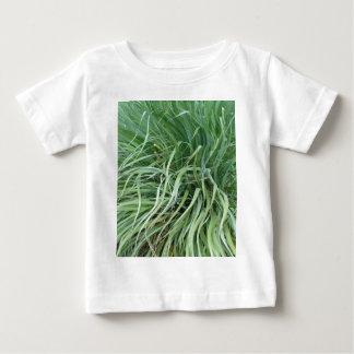 hierbas de los debs camisas