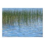 Hierbas del lago anuncio personalizado