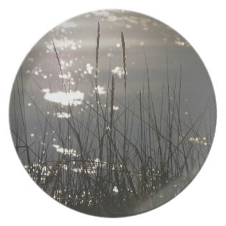 Hierbas del río en placa de los Naturaleza-amantes Plato Para Fiesta