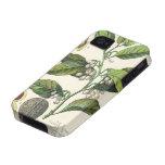 Hierbas especia, semillas de la comida del vintage Case-Mate iPhone 4 funda